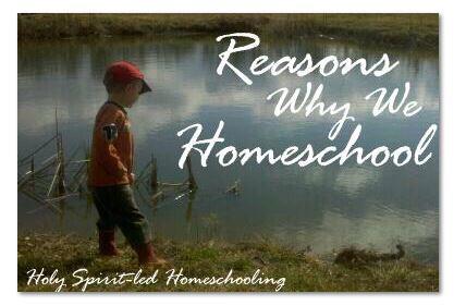 Reasons why we homeschool
