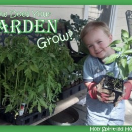 Homeshool Garden: How Does Your Garden Grow?