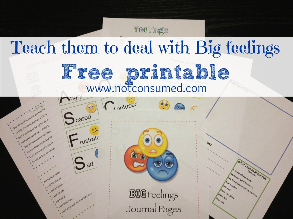 Free Teaching Children to Deal with Big Feelings Journal Pages