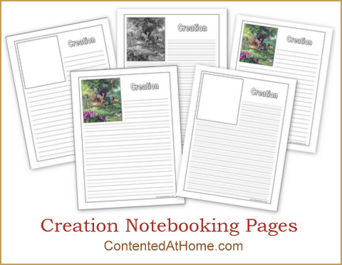 Free Creation Notebooking Pages
