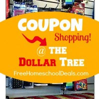 dollar tree homeschool