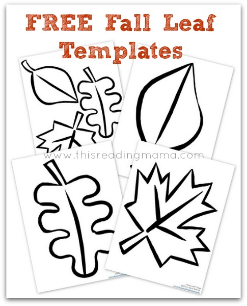 Free fall leaf collage templates free homeschool deals thecheapjerseys Gallery