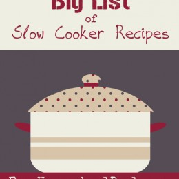 Slow Cooker Recipes: Over 50 Appetizers, Breads, Entrees, and More