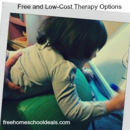 Free and Low-Cost Therapy Options