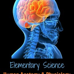Free Human Anatomy and Physiology Lesson Plans