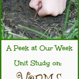 Worm Unit Study Resources