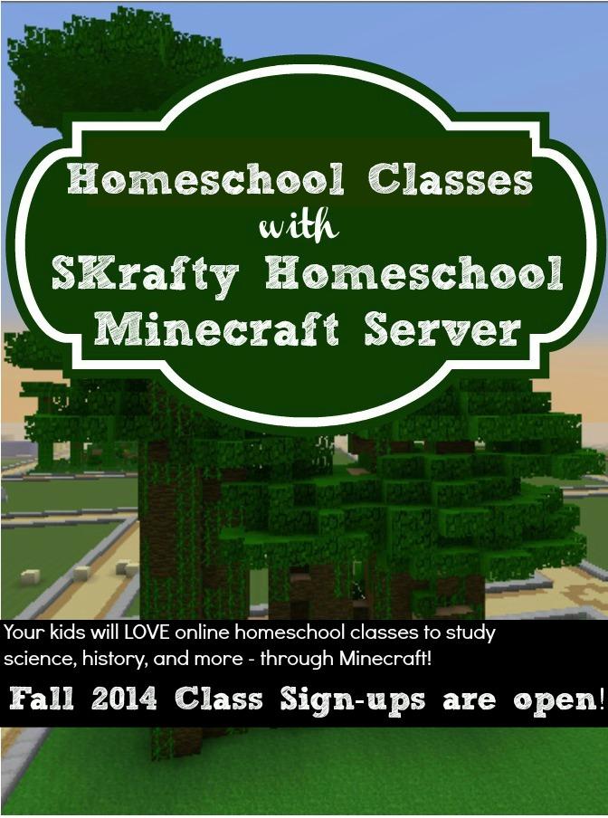 Homeschool with Minecraft - Home | Facebook