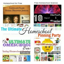 Planning Your Homeschool, Homeschooling All Year Around, And More: The Ultimate Homeschool Pinterest Party!