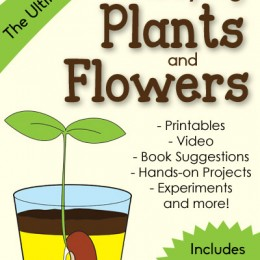 FREE Ultimate Guide to Studying Plants and Flowers