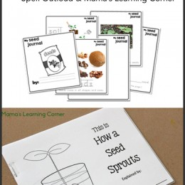 Free Studying Seeds Unit with Printable Mini-Book, Seed Chart, and Vocabulary Page