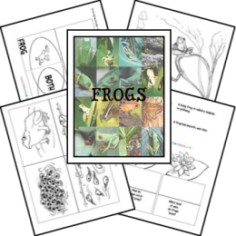 FREE Frog Lapbook and Unit Study Resources