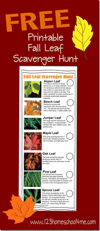 FREE Fall Scavenger Leaf Hunt : Free Homeschool Deals