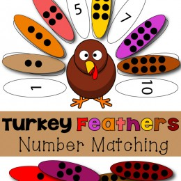FREE Turkey Numbers Match Printable