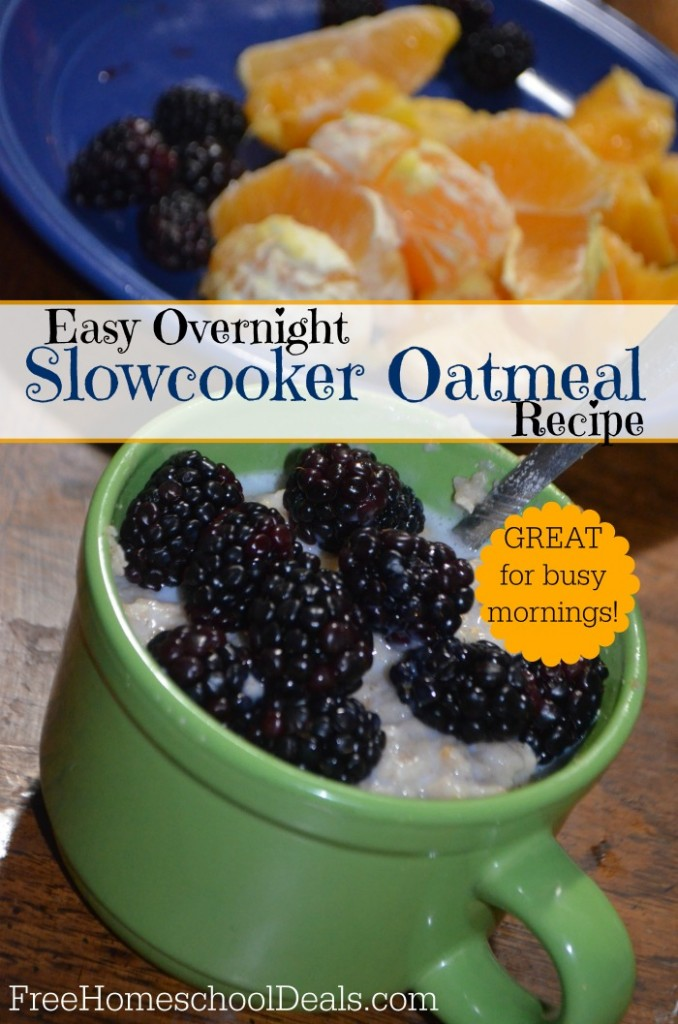 Easy Overnight Slowcooker Oatmeal Recipe