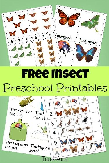 Free Bug Mini Pack Preschool Printables Free Homeschool