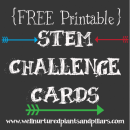 FREE STEM Printables and Activities Pack