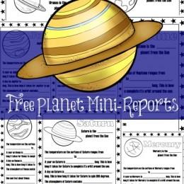 FREE Set of Mini-Planet Reports