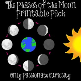 FREE Moon Phases Printables and Lesson