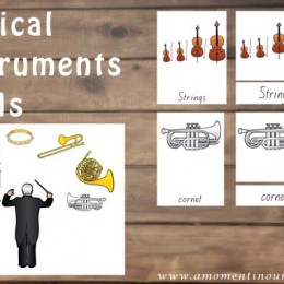 FREE Musical Instrument Cards