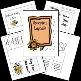 FREE Honeybee Lapbook