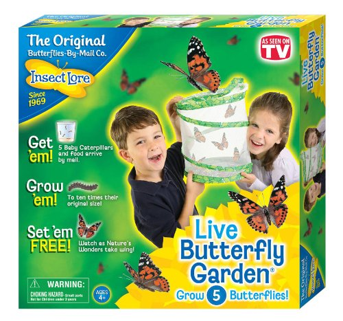 Insect Lore Live Butterfly Garden Only $12.16! (Reg. $20!)