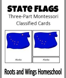 Free State Flag 3-Part Montessori Cards
