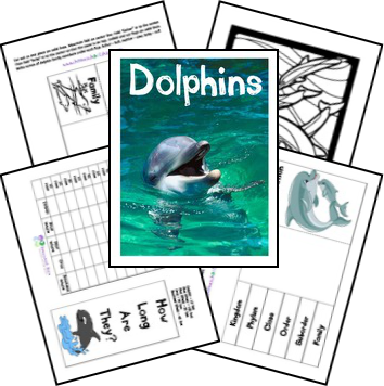 FREE Dolphin Lapbook