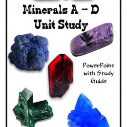Free Minerals (A-D) Unit Study