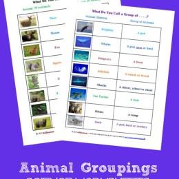FREE Animal Groupings Science Worksheets