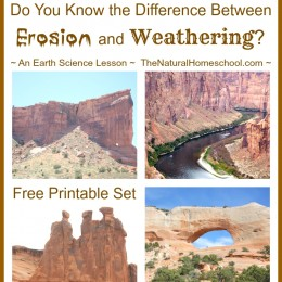 FREE Weather and Erosion Printables