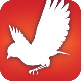 Free Audubon Bird Guide Android App: North America