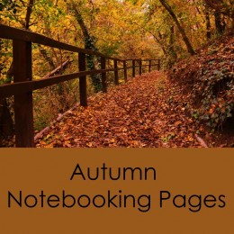 Free Autumn Notebooking Pages (38 Pages!)