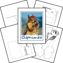 FREE Chipmunk Lapbook and Study
