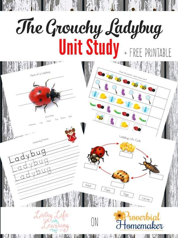 Cap together with Bible Songs For Kids also Img X together with Cap moreover Free Bee Craft Idea. on preschool spelling