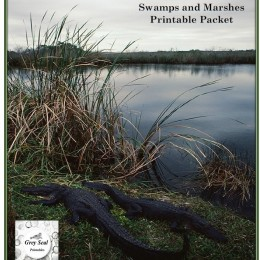 Free Swamps & Marshes Printable Pack
