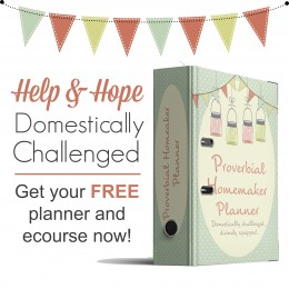 Free Homemaking Planner and eCourse – Limited Time!