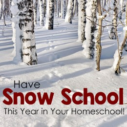 "Have ""Snow School"" This Year! BIG List of Ideas for Your Homeschool!"
