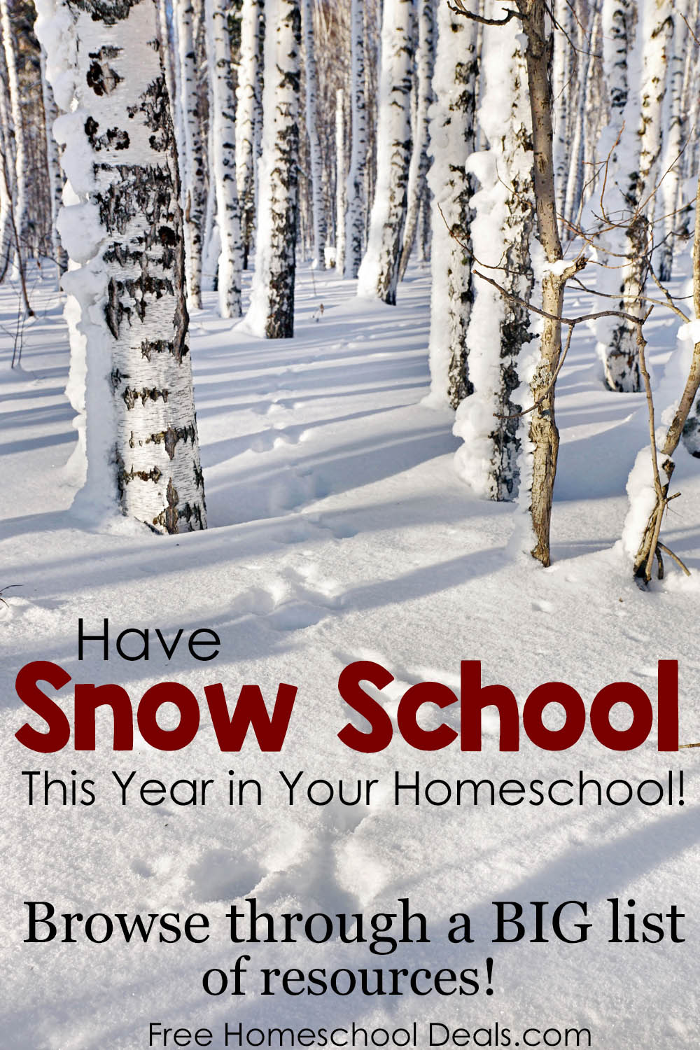 Have snow school this year big list of ideas for your have snow school this year big list of ideas for your homeschool free homeschool deals fandeluxe Gallery