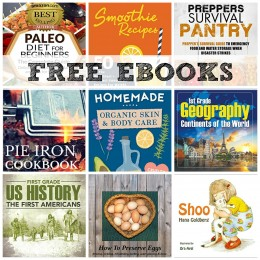 FREE EBOOKS: How To Preserve Eggs, Easy Freezer Meals, Clutter-Free Frugal Life + More!