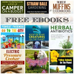 28 FREE EBOOKS: Easy Stew Cookbook, DIY Cleaning and Organizing + More!