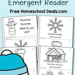Snowman, Snowman, What Do You See? Emergent Reader (instant download!)