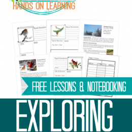 FREE Exploring Winter Animals Lessons and Notebooking