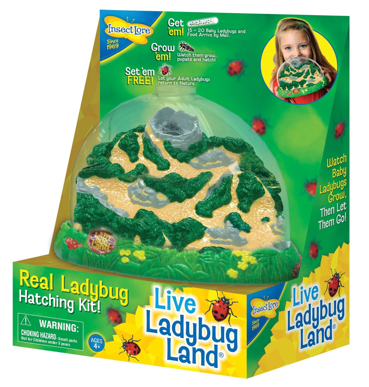 Insect Lore Ladybug Land Only $13.68! (Reg. $19.99)