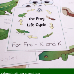 Free Frog Life Cycle Lesson