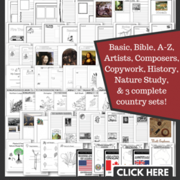 Over 600 FREE NOTEBOOKING PAGES!! Including 3 Complete Country Study Sets!