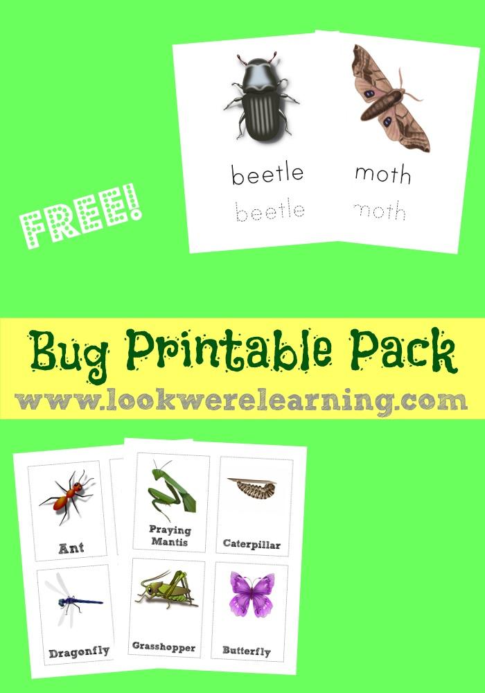 FREE Bug Printables Pack Free