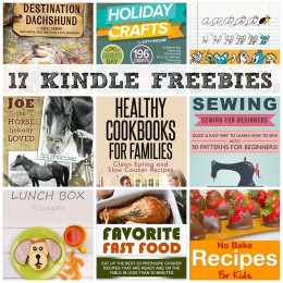 17 KINDLE FREEBIES: 130 Work From Home Ideas, Healthy Cookbooks For Families + More!