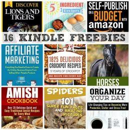 16 KINDLE FREEBIES: 1825 Crock Pot Recipes, Affiliate Marketing + More!