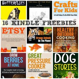 16 KINDLE FREEBIES: CAST IRON COOKBOOK, Crafts For Kids + More!