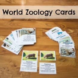 FREE World Zoology Cards ($6 Value!)